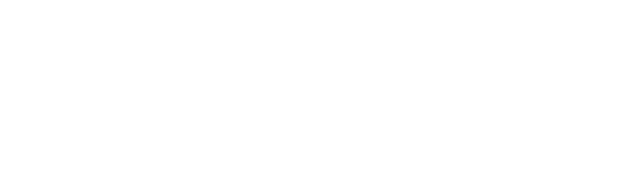 Roof Leak Repair Specialists